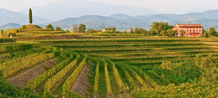 Wine and Food Routes in Friuli Venezia Giulia