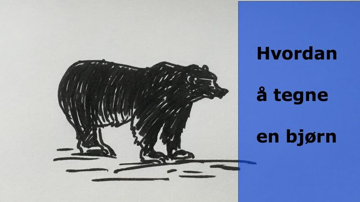 Hvordan å tegne en bjørn. How to draw a bear. skisser ideas, drawing ideas, draw, videos, draw art, draw and sketches, tegning, sketghes, videos, youtube, draw animals www.maleriarenaer.com