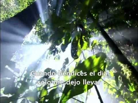 Celine Dion -  I'm alive (subtitulado en español)