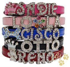 Rhinestoned dog collars. I would love to put my dogs names on these:)