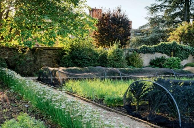 Row covers at le manoir garden pottager pinterest for Landscaping rocks stockton ca