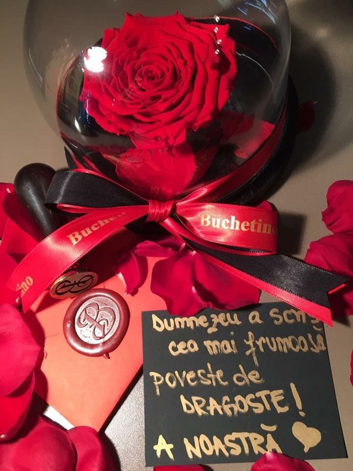Trandafiri criogenati by Buchetino in clopot de sticla Comanda pentru persoana iubita un trandafir nemuritor XXL    www.buchetino.com ☎️ 0723949413  B-dul Mircea Voda No.34