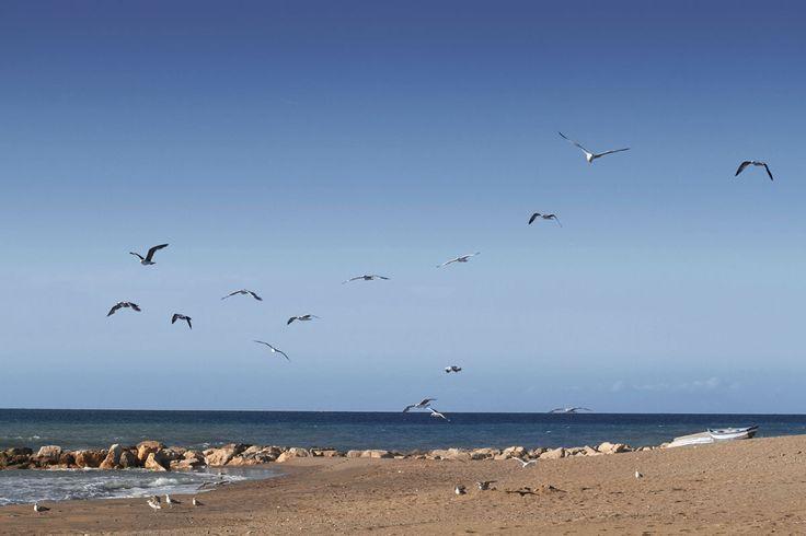 Costa del Sol, Espania