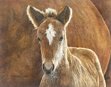 Wild in the Country - Judy Larson - World-Wide-Art.com - $295.00 #JudyLarson #Horses