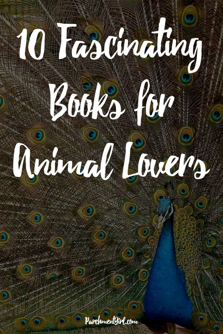 Have you ever wondered what bees feel? Whether animals have a moral conscience? How squirrels survive in the winter? Check out these 10 fascinating animal books!
