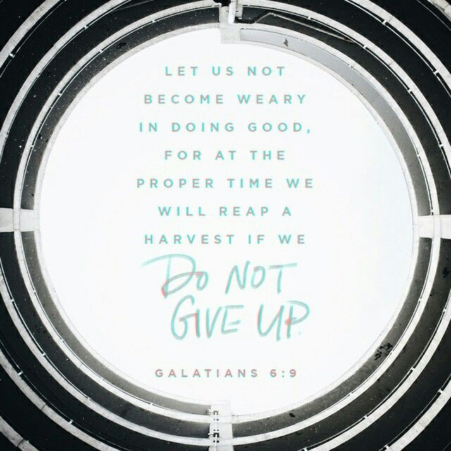 Let us not become weary in doing good, for at the proper time we will reap a harvest if we do not give up. Galatians 6:9 NIV http://bible.com/111/gal.6.9.NIV