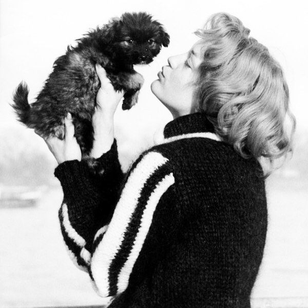 ❤️ #romyschneider #kiss #dog #love #life #animal #nature
