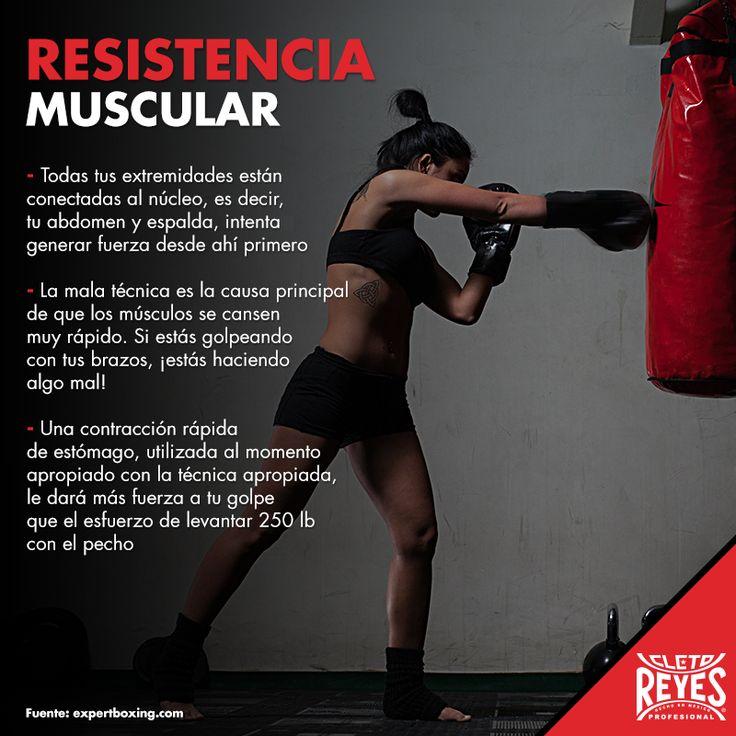 ¡Incrementa tu resistencia muscular! #CletoReyes #training #workout #health #box