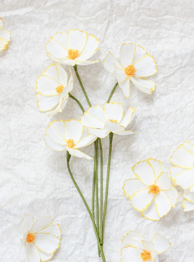 Learn how to make your own DIY Paper Cosmos Flowers in this tutorial by paper flower maker Susan Beech of A Petal Unfolds