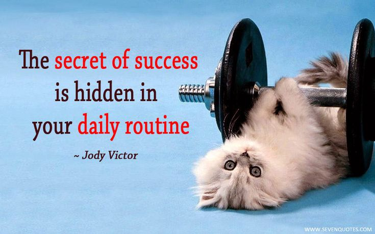 The secret of success is hidden in your daily routine.
