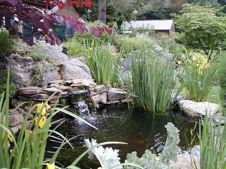 178 best images about creative water features on for Pond ideas for front yard