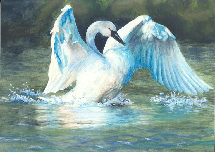 swan lake personals Dating follow us: culture   swan lake: a right royal romp  i always felt in swan lake that if you scratched the surface you could see we were pretending.