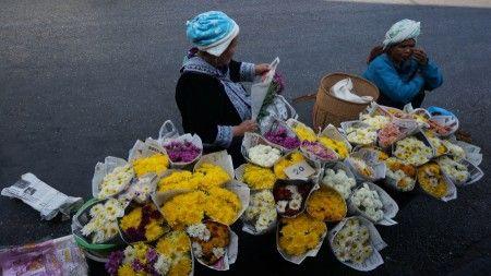 Tonny Haryanto: photo ini saya ambil di kawasan pasar Warorot  Chiangmai  pagi hari . Bunga bunga segar iwarna warni ni mereka jual dipinggir jalan .