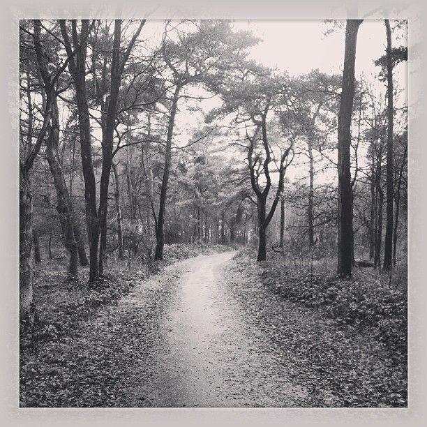 Walk this way!! #REDRUN | Photo by mikescheijen