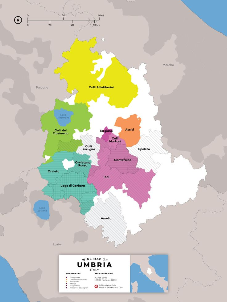 A Guide to Umbrian Wine #Wine #Wineeducation #Italy