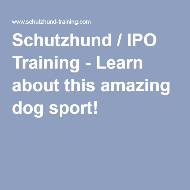 Schutzhund / IPO Training - Learn about this amazing dog sport!