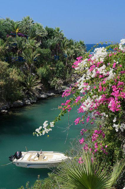 The palm beach of Vai, East Crete , Greece