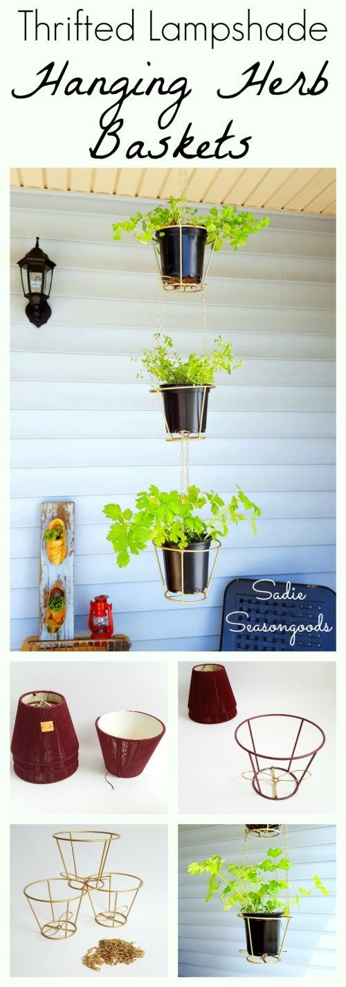 Small, outdated lampshades from the thrift store are perfectly upcycled and repurposed as hanging baskets for pots of herbs! Strip them to their metal bones, connect with chain, and you have a delightful vertical herb garden for your porch or patio- all s