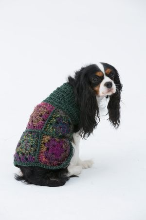 The Hippie Dog Sweater - free pattern from Lion Brand. Granny Squares for fur babies too! :)