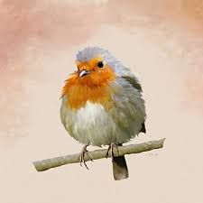 Image result for paintings of robin red breasts