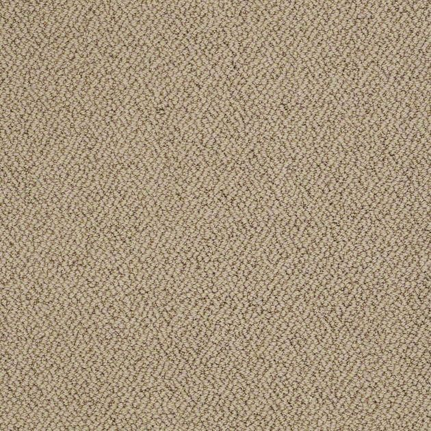 Loop carpeting in style merino color great britain by for Taupe color carpet