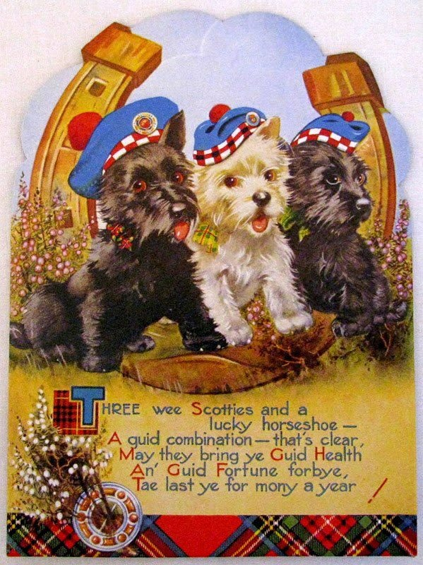 1374 best scottie dogs images on pinterest scottie dogs scottish three wee scotties may they bring ye guid health an guid fortune m4hsunfo