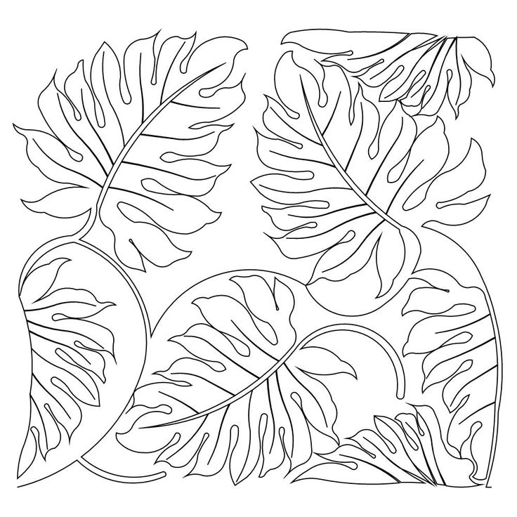 jungle background coloring pages - photo#14