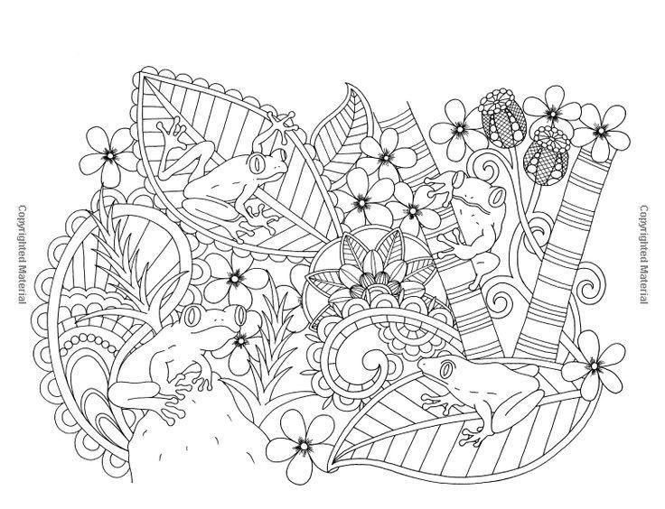 124 besten coloring frog Bilder auf Pinterest   Zentangle