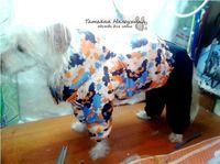 Уголок моих идей: МК Шьем зимний костюм для собаки .Часть2 куртка