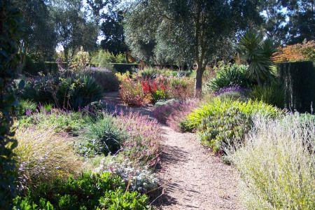 Lambley Dry Garden 110315
