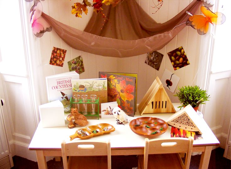 Nature Discovery Table ≈≈ http://pinterest.com/kinderooacademy/provocations-inspiring-classrooms/