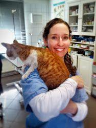 Karina | veterinarian