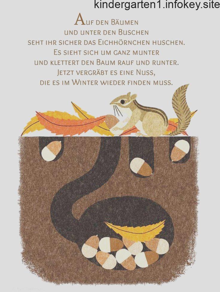 Eichhornchen Gedicht Kindergarten Erzieherin Kita Kinder Erziehung Herbst Reim Kinder Reime Herbst Im Kindergarten Kindergarten Lieder