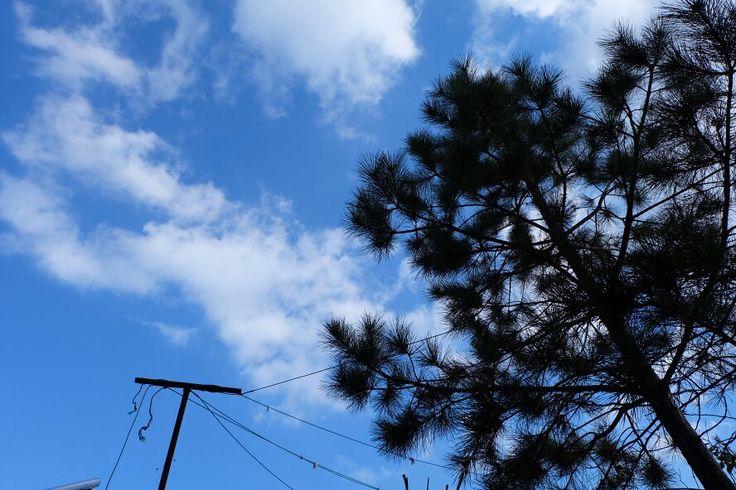 이 하늘... 내꺼! :)