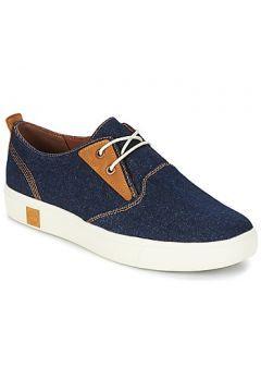 Düşük bilekli spor ayakkabıları Timberland AMHERST CANVAS PTO https://modasto.com/timberland/erkek-ayakkabi/br1247ct82 #erkek