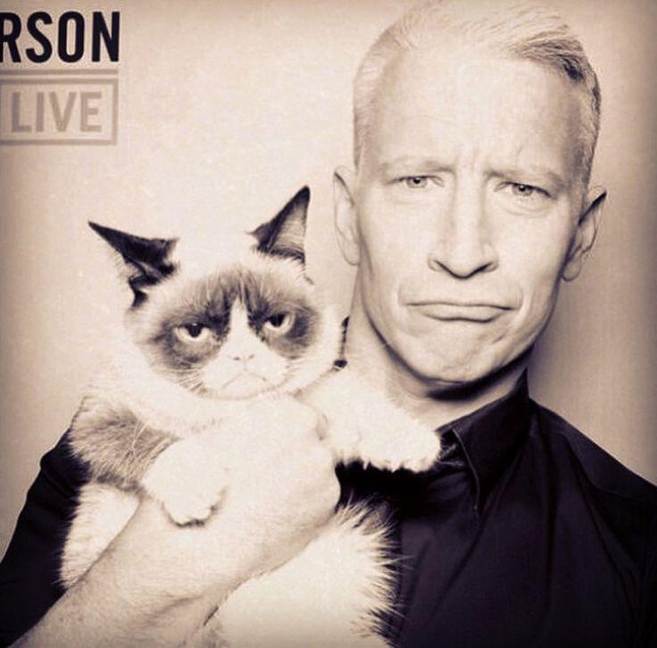 grumpy cat wedding invitations%0A Celebrities Love Grumpy Cat   GrumpyCatMerch com