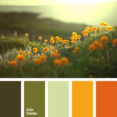 Color of orange flowers, muted shades of green – the colors of summer meadows are embodied in this palette. Pastel light olive adds tenderness to quite energetic color combination. This color gamma is good for the interior of a spacious bathroom or summer terrace of a country house.