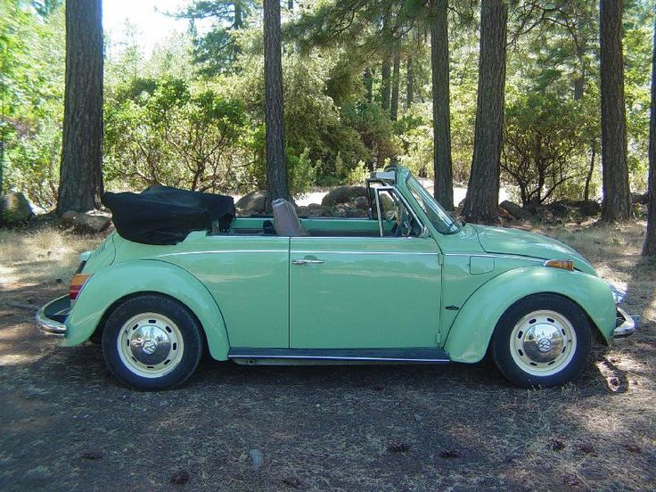 Bug love. This is my absolute dream car. Baby blue punchbuggie convertible <3