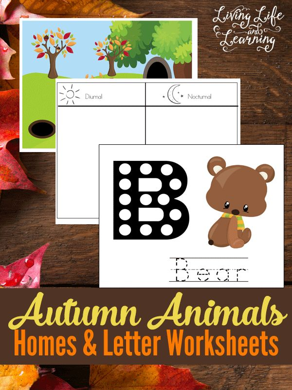 These autumn animals homes and letter worksheets are great for preschoolers and kindergarten students.