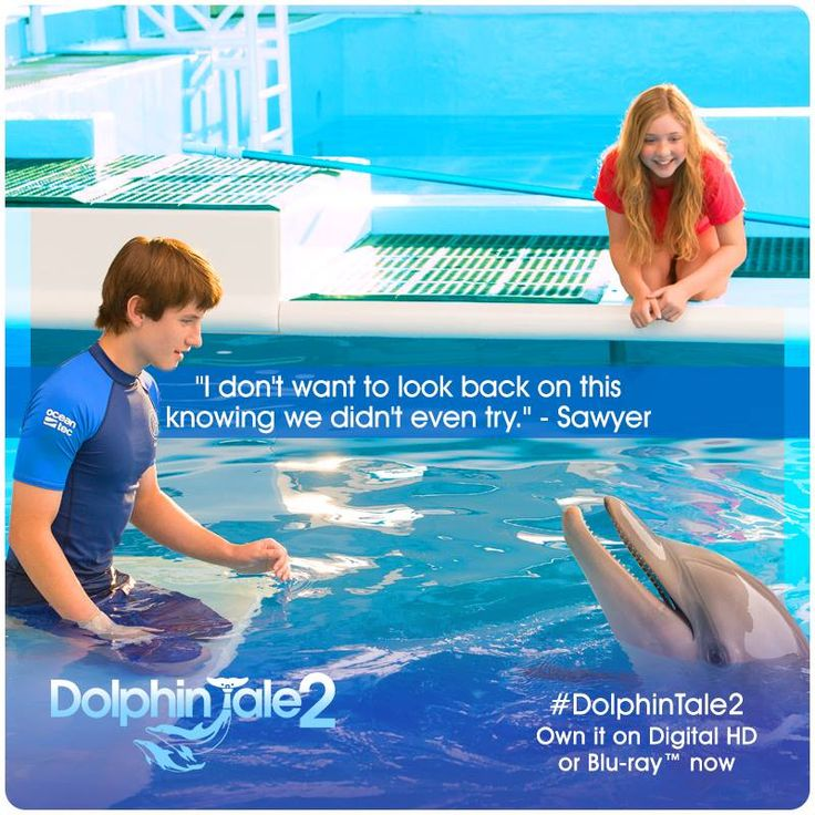 What's your New Year's resolution? ‪#‎DolphinTale2‬