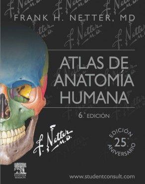Atlas de anatomía humana / Frank H. Netter ; [traducción y revisión científica, Víctor Götzens García]---6ª ed.--- Elsevier Masson, cop. 2015------------------------------------------------------Bibliografía recomendada en: Anatomía Humana (Grao Enfermaría)