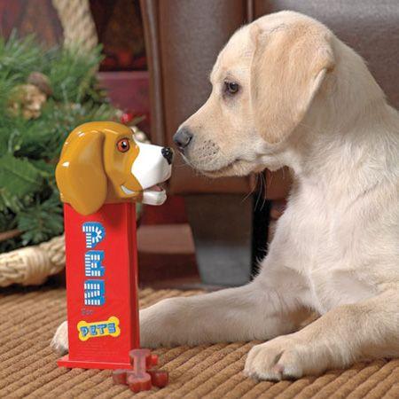 cute PEZ dog treat dispenser