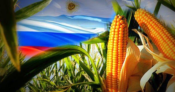 http://ift.tt/2lH7gUG http://ift.tt/2lH9CTLEstados Unidos es el primer productor de maíz de todo el mundo y México es su principal comprador. Con el endurecimiento de las relaciones entre México y EEUU tras la llegada de Donald Trump Armando Ríos Piter miembro del PRD y que encabeza la Comisión de Relaciones Exteriores del Senado pretende presentar esta semana un Proyecto de Ley para que México deje de comprar maíz a Estados Unidos y comience a adquirirlo en Argentina y en Brasil. Si en…
