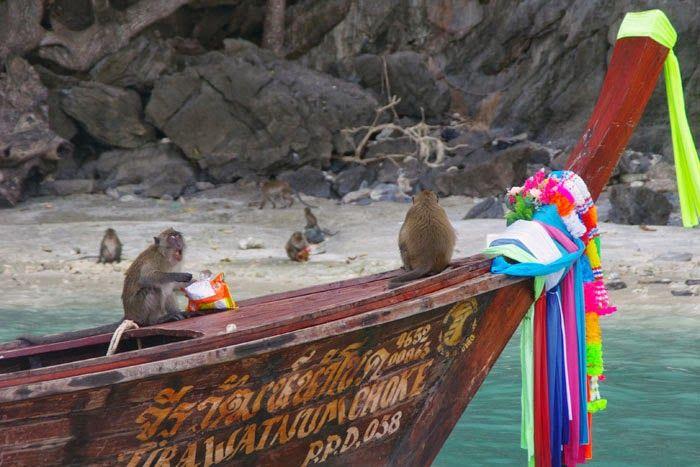 Schuldi's World: Pourquoi ne pas séjourner à Ko Phi Phi ?
