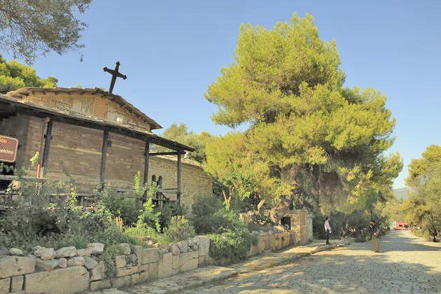 Ενα πεύκο και... ο Πικιώνης που πληγώναμε | Η Εφημερίδα των Συντακτών