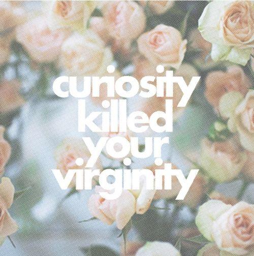 curiosity killed your virginity