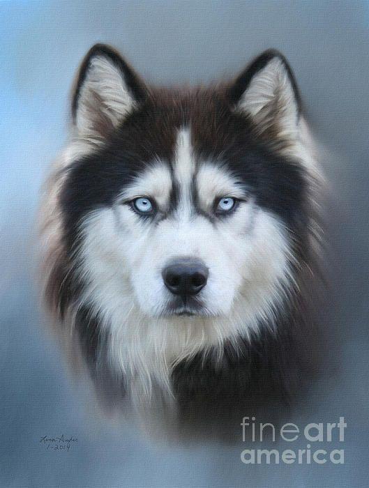 Title  Siberian Husky   Artist  Lena Auxier   Medium  Digital Art - Digital Painting