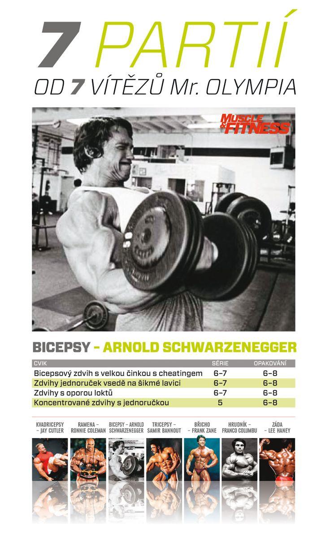 7 partií od 7 víťazov Mr. Olympia -bicepsy podľa Arnolda.