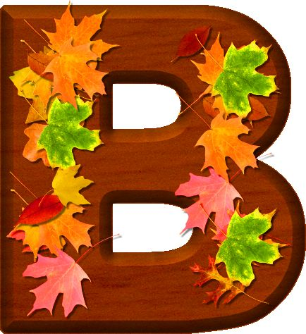 Presentation Alphabets: Cherry Wood Leaves Letter B
