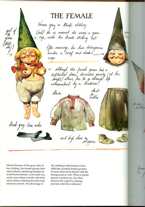 Gnomes  by Wil Huygen  Illustrations by Rien Poortvliet